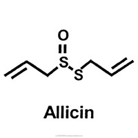100% Patented Allicin Powder Extract and Allicin Liquid Extract, Bulk and Wholesale Allicin Inquiries Only Ship World-Wide