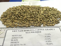 VIETNAMESE EXPORTER ROBUSTA GREEN COFFEE