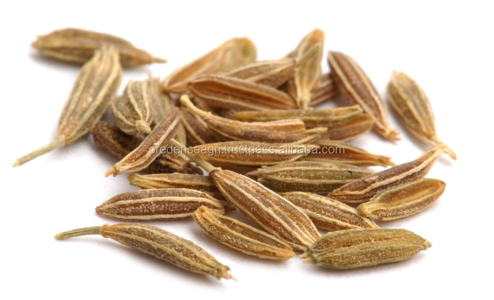 Different Types of Cumin Seeds