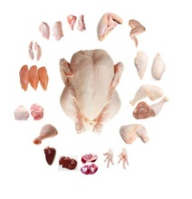 Brazil Halal Frozen Whole Chicken, Frozen Chicken Paws Frozen Processed Chicken Feet