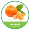 HIGH QUALITY FRESH ORANGE / MANDARIN/ VIETNAMESE FRESH FRUIT