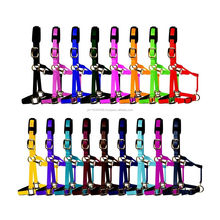 New Nylon Halter Super Finish Style Luxury Head collar/Halter - Many colours & Sizes-Equestrian -Horse Equipments