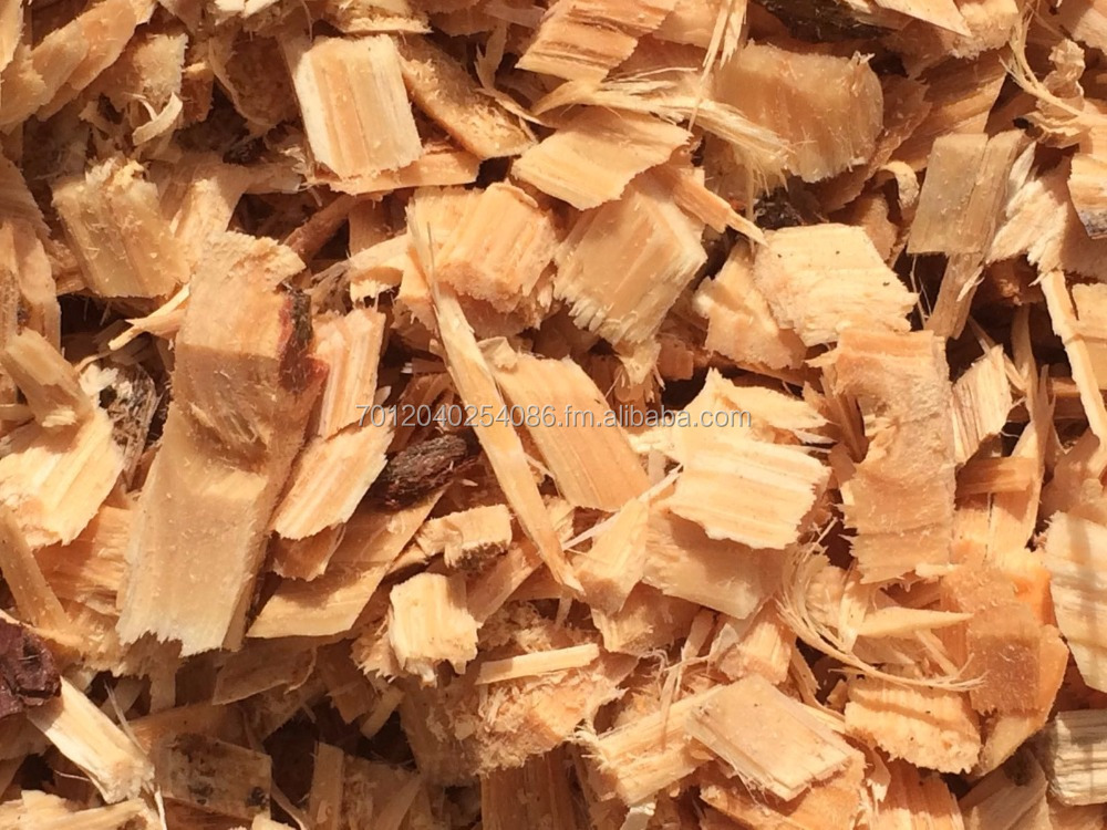 Pine wood chips from south africa buy