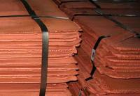Good Quality Copper Cathodes 99.99% Factory Price!!!