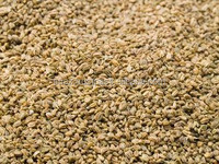 Cheap Celery Seeds , Pakistan Celery Seeds Exporter