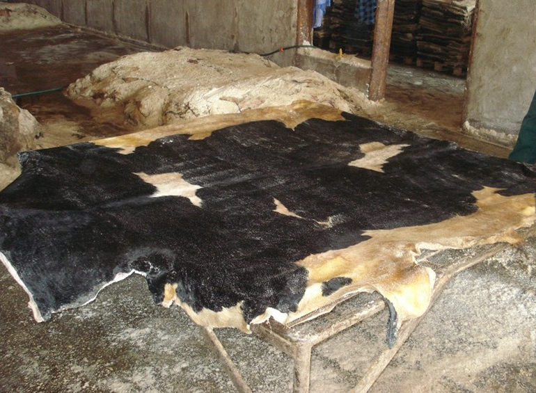 Wet Salted Donkey Hides & Cow Hides, Goat and Sheep Skin. Best Quality Competitive Price Hot Sale