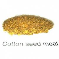 Specification of Cotton Seed Meal for poultry meal