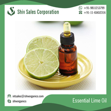 Restorative Tonic Antiviral Antiseptic Lime Oil for Bulk Purchase