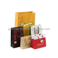 Most Demanding best Shopping style iten use multidesign and multi colour best decorative Paper Shopping Bags wholesale and bulk.