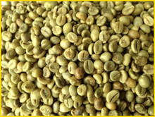 Robusta Coffee S18 Clean SALE (Viber and Whatsaap: +84965152844)