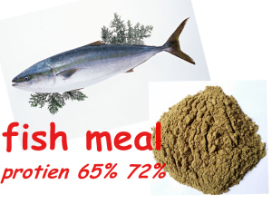 DRIED HIGH PROTEIN FISH MEAL / 65% - 72% FISH MEAL FOR ANIMAL FEED