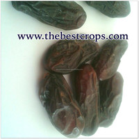 Dried Date of Iran wholesale