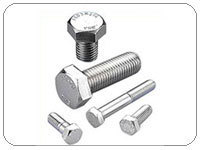supplier good quality best price hex head hollow bolt and nut