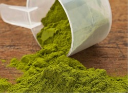 freeze dried moringa leaf powder Great stock with competitive price