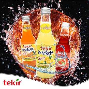 Fruit Flavoured Carbonated Soft Drinks