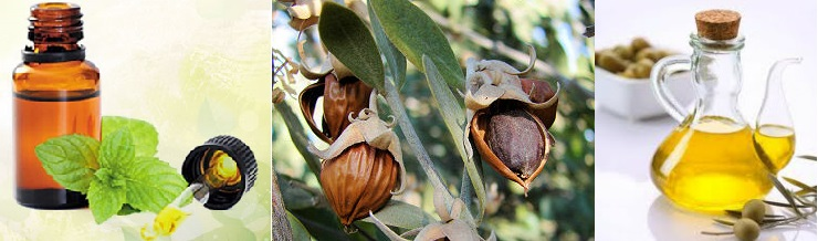 Jojoba Oil Pure and Natural for Cosmetic