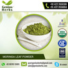 Natural & Pure Quality Moringa Powder Bulk Manufacturer