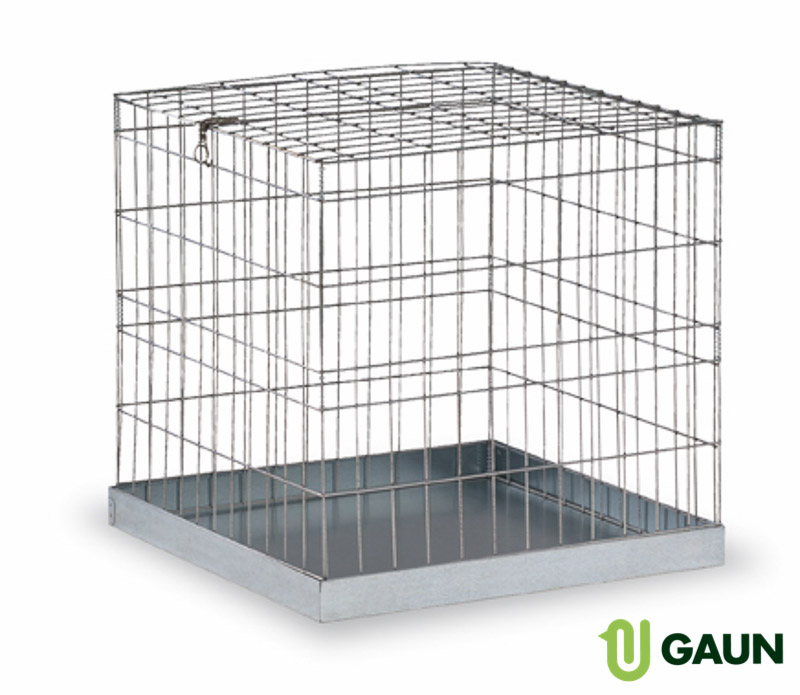 Show cage for dogs small
