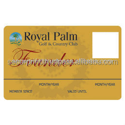 PVC Plastic Card (Gold Foil, Sliver,Smart Card, Security Card, Staff Card, High Quality Cards,Magnetic Card)