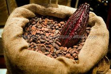 Cacao Beans high Quality crop 2016