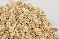 High Quality Oats for sale good price