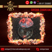 Easy to Light Hookah Shisha Charcoal for Best Tobacco Taste