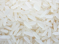 Best Quality Thailand Brown/White Rice 5% Broken