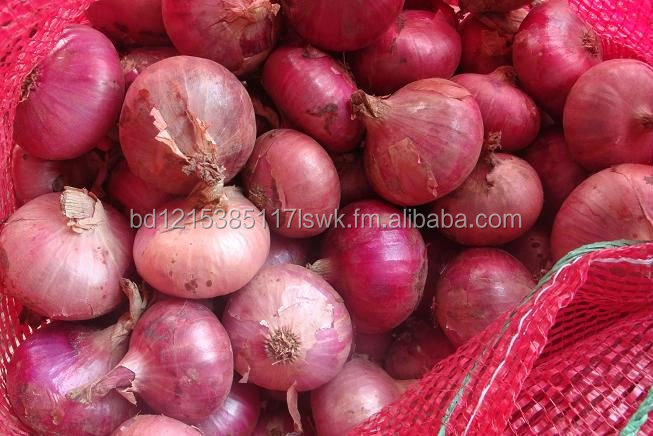Fresh Red Onions for Sale