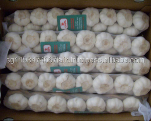 Fresh Purple White Natural Garlic (4.5-6.0cm)