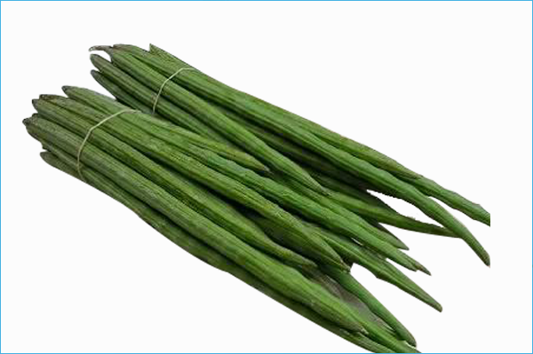 Organic Fresh Drumstick Vegetable from India