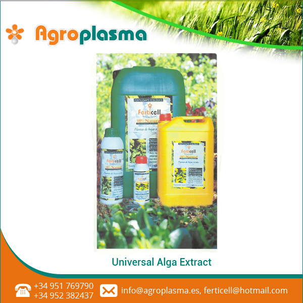 Universal Alga Extract Increased Root Development By Promoting More Lateral And Deeper Roots