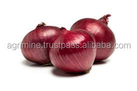 red onion export to maldives