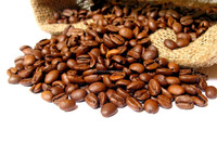 raw coffee beans, robusta coffee beans,directly from farm low price