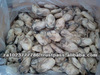 High Quality Frozen Oyster Meat IQF Grade A for sale