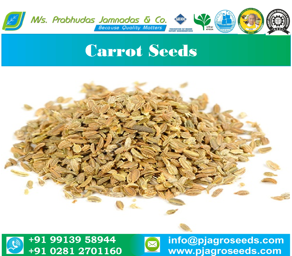Germination 90% Carrot Seeds