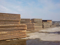 Unedged Oak Boards/Woods/Timber