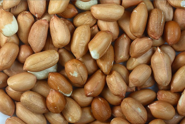 Natural / Roasted Cashew Nut/Raisin/Peanuts/Seeds Snack for Sale