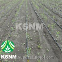 The Listed Company High Quality Drip Irrigation Products