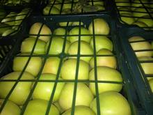 Fresh sugar Polish golden delicious apple