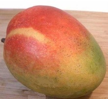 Fresh Whole Peruvian Kent Mango