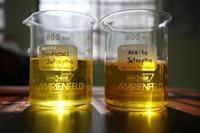 Fresh jatropha oil for biodiesel