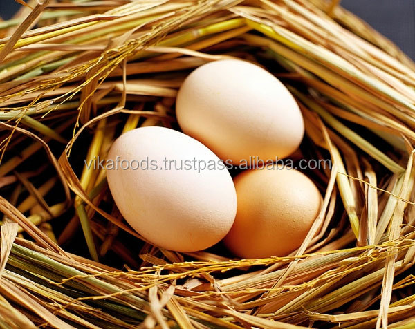 Vietnam Fresh Chicken Egg - High Quality - Strict Quarantine - Cheap Price