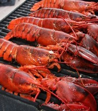 Pacific Canadian Red Lobsters