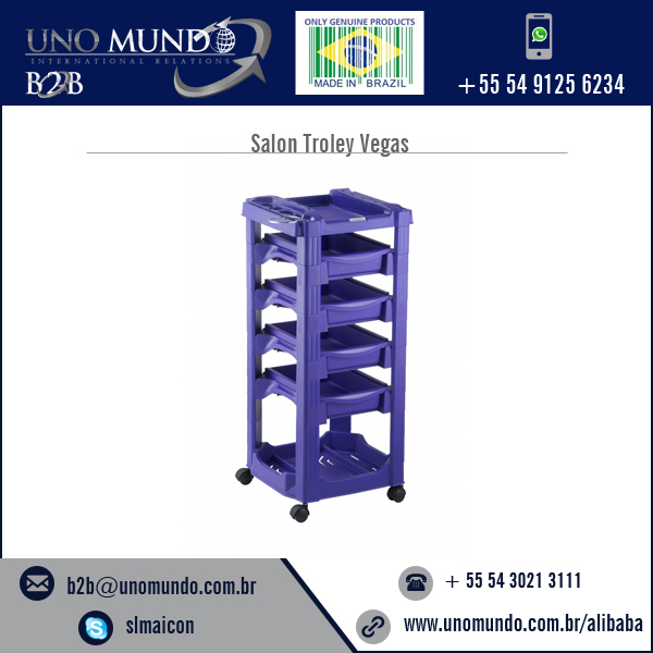 Premium Material Made Best Quality Salon Trolley Price