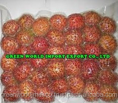 FROZEN RAMBUTAN FRUIT, PASSED FDA AND KFDA, JAPAN MARKET !
