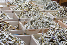 Assorted dried anchovy fish