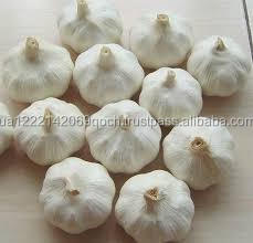 Natural Fresh White Garlic