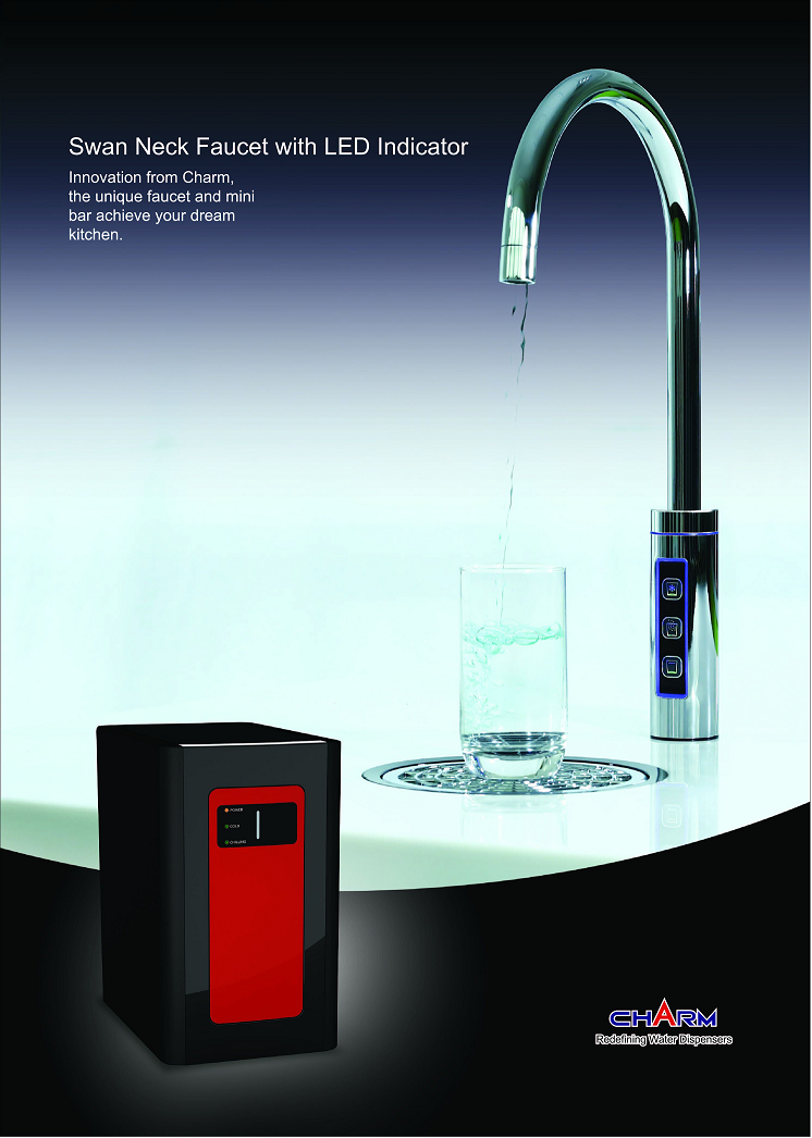 Water purifier with replaceable filters
