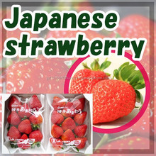 Popular and High quality strawberry puree FRESH FRUIT made in Japan
