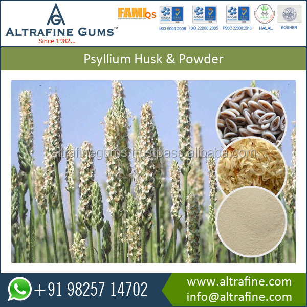 Top Most Exporting100% pure natural Psyllium Husk powder for Food Processing Company